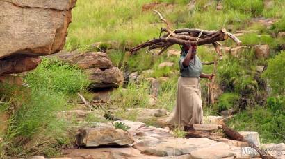 iDPhotoGraphics-Africa-05